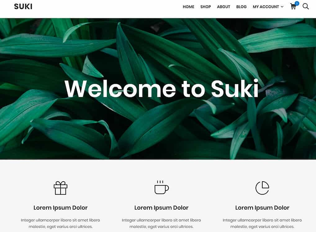 Choose Suki as fast WordPress theme for your website